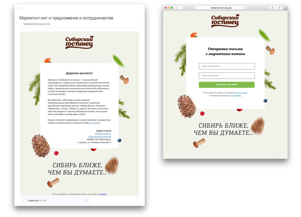 письмо и форма для отправки маркетинг-кита «Сибирского гостинца»