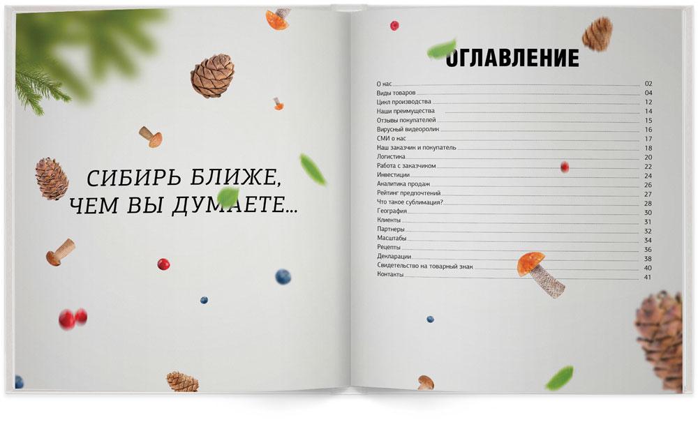 Содержание маркетинг-кита «Сибирского гостинца»